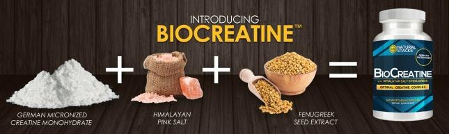 biocreatine-creatine_1869